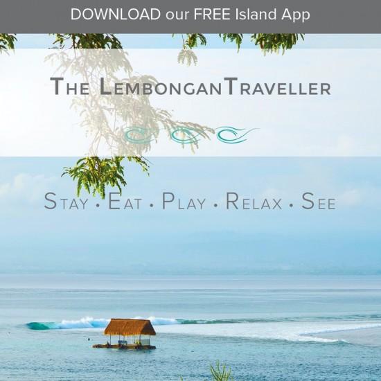 The Lembongan Traveller DL Flyer White Canvas Design Website development, Graphic Design, Branding, Mobile App Development, Perth Agency